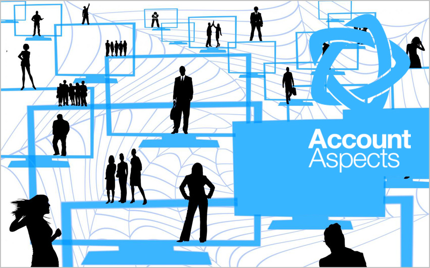 Account Aspects Building A Social Business